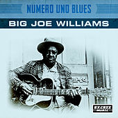 Numero Uno Blues by Joe Williams