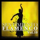 Sentimiento Flamenco Vol.10 by Various Artists