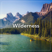 Wilderness von Various Artists