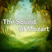 The Sound of Mozart by Wolfgang Amadeus Mozart
