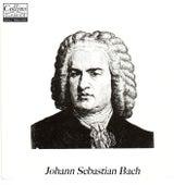 Classical Revision: Bach by Johann Sebastian Bach