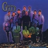 Internacional by Grupo Gale