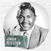 Junior Selection by Junior Parker