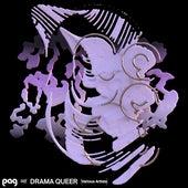 DRAMA QUEER von Various Artists