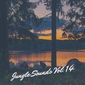 Jungle Sounds Vol. 14 de Various Artists