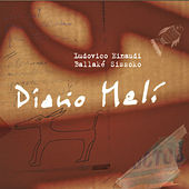 Diario Mali by Ludovico Einaudi