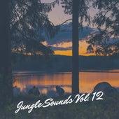 Jungle Sounds Vol. 12 de Various Artists