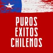 Puros Éxitos Chilenos de Various Artists