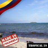 Made In Colombia: Tropical, Vol. 29 de Varios Artistas