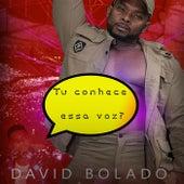 Tu Conhece Essa Voz? de David Bolado