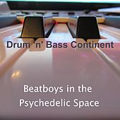 Beatboys in the Psychedelic Space von Drum 'n' Bass Continent