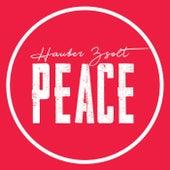 Peace von Hauber Zsolt