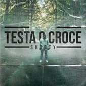 Testa o croce by Shorty