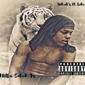 What Its Like (remix) de Hitta Satch jr