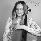Falling de Caitlin Tarver