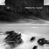 Prismatic Waves de Various Artists