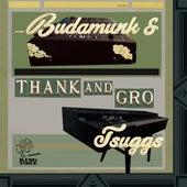 Thank And Gro de Tsuggs Budamunk