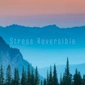 Stress Reversible de Stress Reversible