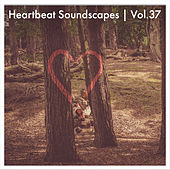 Heartbeat Soundscapes, Vol. 37 by Various Artists