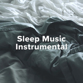 Sleep Music Instrumental von Various Artists