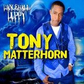 Dancehall Duppy by Tony Matterhorn