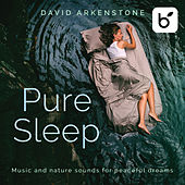 Pure Sleep: Music And Nature Sounds For Peaceful Dreams by David Arkenstone