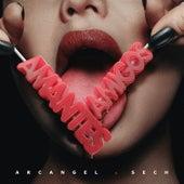 Amantes y Amigos by Arcangel