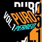 Puro Perreo Vol. 1 de Various Artists
