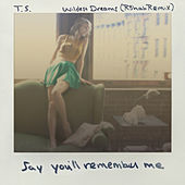Wildest Dreams (R3hab Remix) by Taylor Swift