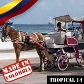 Made In Colombia: Tropical, Vol. 14 de German Garcia