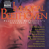 Immortal Beethoven de Various Artists