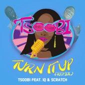 Turn It Up (Remix) by Tsoobi