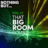 Nothing But... That Big Room Sound, Vol. 11 by Various Artists