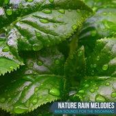 Nature Rain Melodies - Rain Sounds for The Insomniac de Various