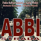 Abbi Strada de Fabio Koryu Calabrò
