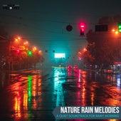 Nature Rain Melodies - A Quiet Soundtrack for Rainy Morning von Various