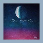 Dear Night Sky by Chili