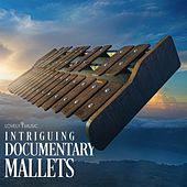 Intriguing Documentary Mallets by Lovely Music Library
