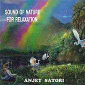 Sound of Nature for Relaxation van Anjey Satori
