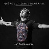 Qué Voy a Hacer Con Mi Amor by Luis Carlos Monroy