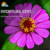 Enticing Floral Scents - Blissful Spa Music 2020 di Various Artists