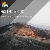 Engulfed in Bliss - Spa Music to Exhilarate Your Soul di Various Artists