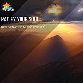 Pacify Your Soul - Rejuvenating Music for Spa di Various Artists