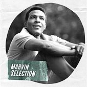 Marvin Selection by Marvin Gaye