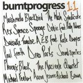 Burnt Progress 1.1 by Various Artists