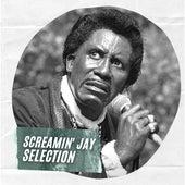 Screamin' Jay Selection de Screamin' Jay Hawkins