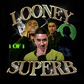 1 of 1 by Looney Superb