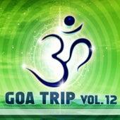 Goa Trip, Vol. 12 (Goa, Psytrance, Goatrance and Trance Anthems) de Various Artists