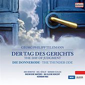 Telemann: Der Tag des Gerichts (The Day of Judgements) by Various Artists