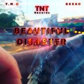 Beautiful Disaster by Desko